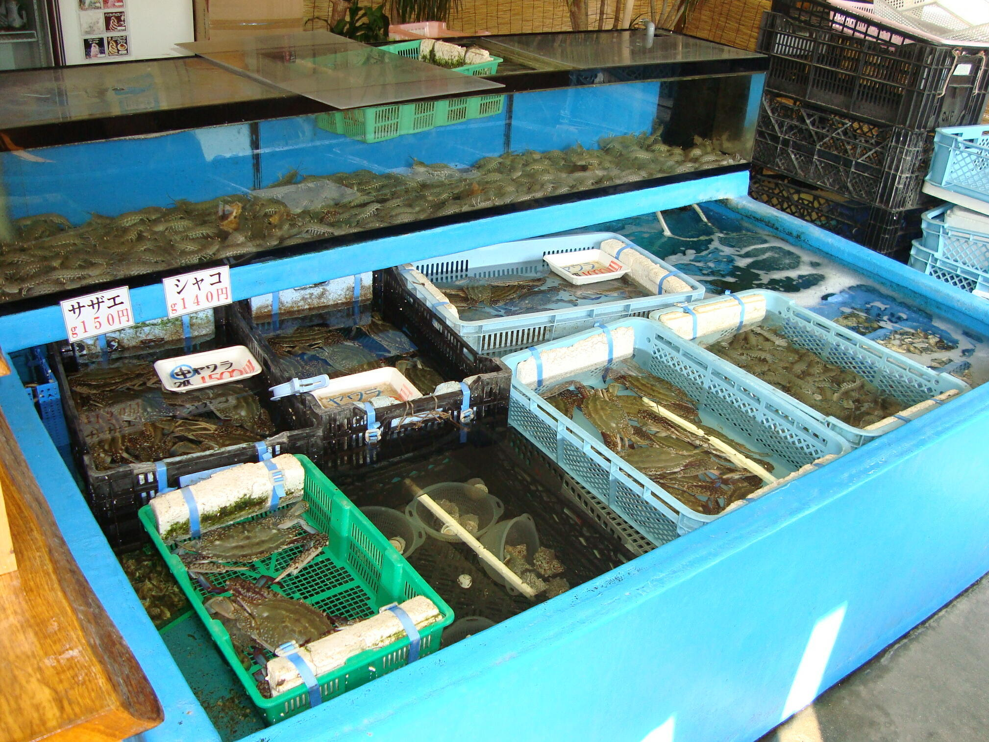 種類豊富な新鮮な海産物