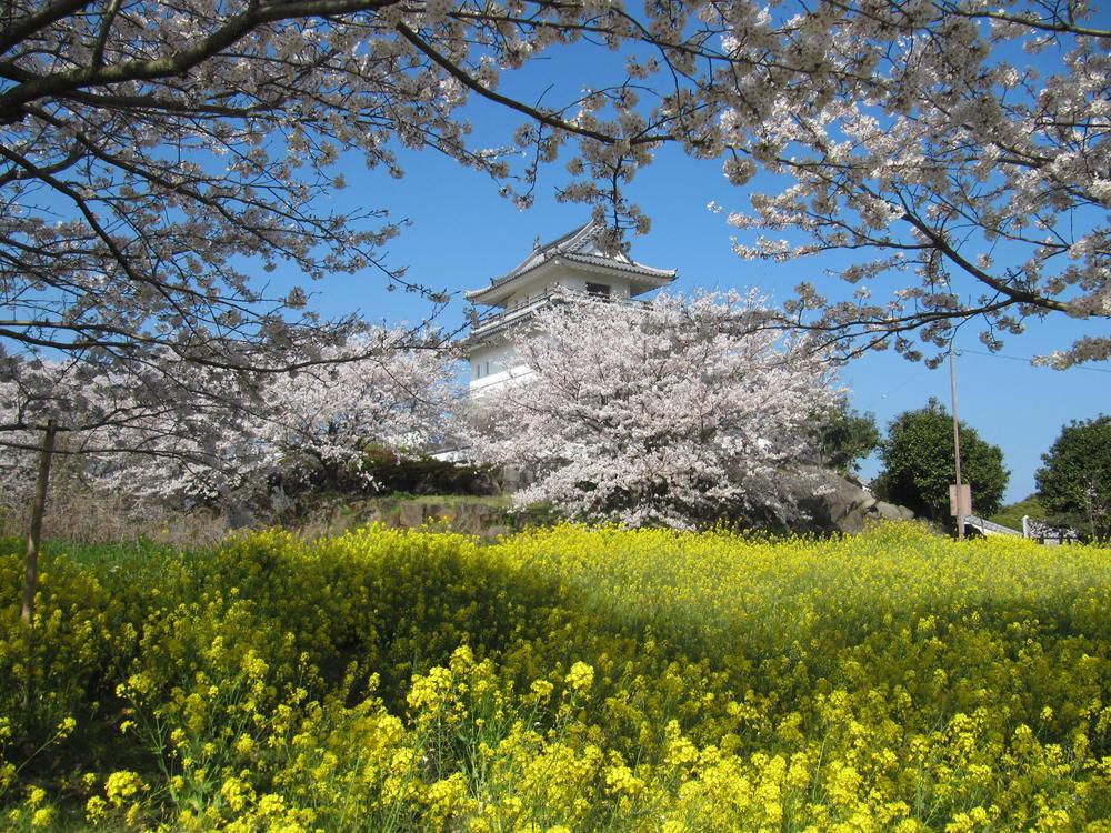 竹崎城址展望台公園の桜情報